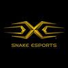 Snake电竞俱乐部